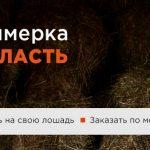 vyezdnaya_primerka-1260x354